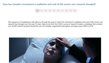 palliative and end of life care visualization